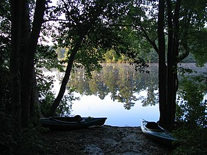 Wharton State Forest - View from a campsite at Atsion Recreation Area