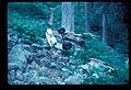 August, 1977. slide (7be0048202fa4af3b94386170b96a229).jpg