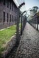 Auschwitz - panoramio (28).jpg
