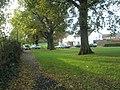 Autumn in Bentworth Close - geograph.org.uk - 1565708.jpg
