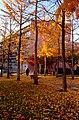 Autumn sun (15436966654).jpg