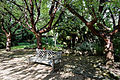 Avenue bench Capel Manor Enfield London England.jpg