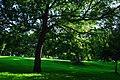 Backhouse Park - panoramio - somaliayaswan (4).jpg