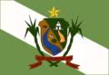 Bandeira Capela.png