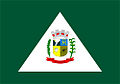 Bandeira Tijucas do Sul.jpg