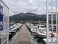 Bar, Montenegro - panoramio (30).jpg