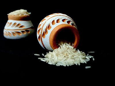 Basmati biryani Rice.jpg