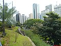 Bela vista da Area Verde e dos Predios - Sao Paulo SP - panoramio.jpg