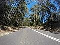Benandarah NSW 2536, Australia - panoramio (3).jpg