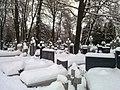 Biala-Podlaska-catholic-cemetery-130125-05.jpg