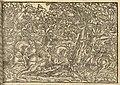 Biblia Leopolity – śmierć Absaloma.jpg
