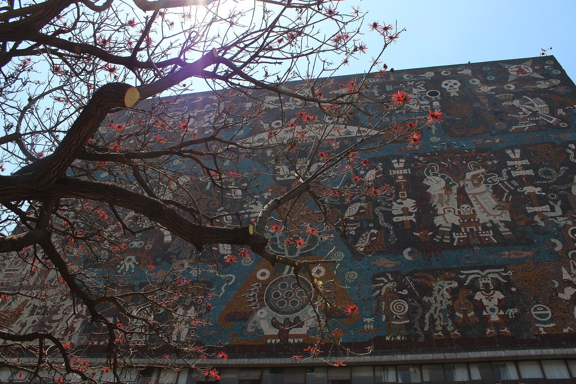 Biblioteca Central UNAM muro norte