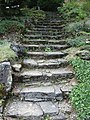 Bielefeld Botanischer Garten Treppe.jpg
