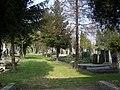 Bielsko-Biała, Cmentarz żydowski - fotopolska.eu (55331).jpg