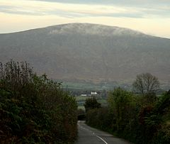 Blackstairs3.jpg