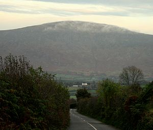 Blackstairs Mountain - Blackstairs Mountain