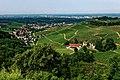 Blick vom Schloss Staufenberg auf die Weinlandschaft rund um Durbach. 07.jpg