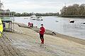 Boat Race 2014 (07).jpg
