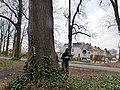 Boechout 29 - 200010 - onroerenderfgoed.jpg