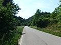 Bohuňov (SY), silnice do Svojanova.jpg