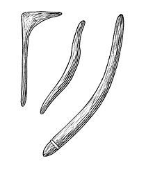 Boomerang2 (PSF).jpg