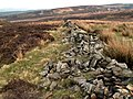 Boundary Wall - geograph.org.uk - 398825.jpg