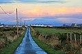Bowmore - panoramio (5).jpg