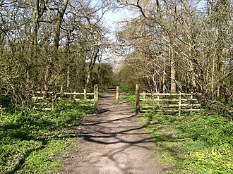 Bradley and Dixon Woods - Entrance to Bradley Woods