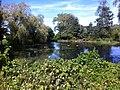 Brewster, MA 02631, USA - panoramio.jpg