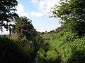 Bridleway to Blaencathal - geograph.org.uk - 1357142.jpg
