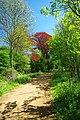 Bridleway to Dagnam Park - geograph.org.uk - 1845524.jpg