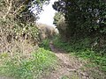 Bridleway to Trenoweth - geograph.org.uk - 369526.jpg
