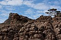 Briggs Bluff Walk, Grampians National Park, Victoria Australia (4871030189).jpg
