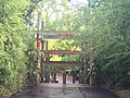 Bronx Zoo - New York - USA - panoramio (6).jpg