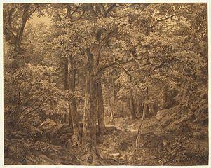 William Trost Richards Forest Interior 205 X 255 Framed Premium Canvas Print