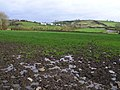 Brootally Townland - geograph.org.uk - 618164.jpg