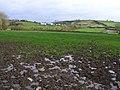 Brootally Townland - geograph.org.uk - 618164.jpg