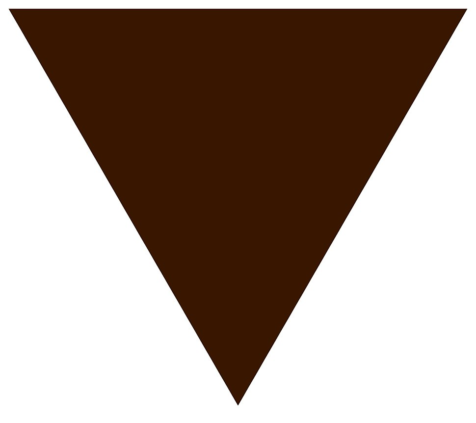 Brown triangle svg