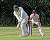Buckhurst Hill CC v Dodgers CC at Buckhurst Hill, Essex, England 81.jpg