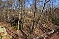 Burgruine-Hattstein-JR-E-3720-2020-04-02.jpg