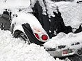 Buried Bumper (408006830).jpg