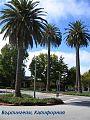 Burlingame-California.jpg