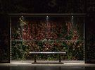 Busskur i Riisskov natfoto version 2.jpg