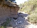 Butcher Jones Trail - Mt. Pinter Loop Trail, Saguaro Lake - panoramio (171).jpg