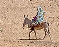 By the Nuri Pyramids (7) (33380907734).jpg