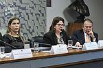 CDR - Comissão de Desenvolvimento Regional e Turismo (30099632246).jpg