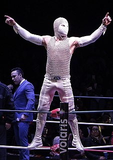 Místico II Mexican professional wrestler