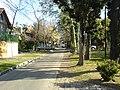 Calle Capitán Krause, Ciudad Jardín, Buenos Aires, Sep-06 - panoramio.jpg