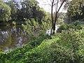 Camowen River - geograph.org.uk - 1532584.jpg