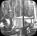 Camp Tawasentha on July 4th, circa 1905 (5732396282).jpg